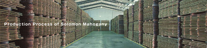 Production Process of Solomon Mahogany
